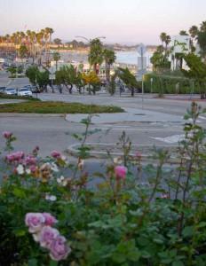 View from the West Cliff Inn garden.