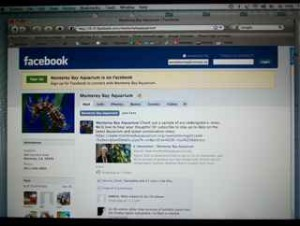 Different strokes: For some folks, its the Facebook Page.