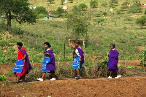 Women in Msinga